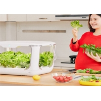 Buy cheap 24V 10W Light PVC Kitchen Hydroponic Growing Systems from wholesalers