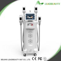 Quality 4 Big heads cryolipolysis slimming machine for body shaping for sale