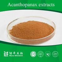 Buy cheap plant extract powder-Acanthopanax root extract product