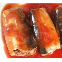 Quality new product sardine in can with tomato sauce, canned sardine for sale