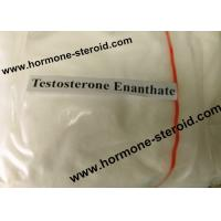 Buy cheap Normal Testosterone Enanthate Injection Testosterone Raw Powder For Women CAS 315-37-7 product
