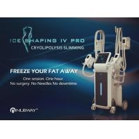 Quality 2019 New Arrivals! Ice Shaping Cool body sculpting Cryolipolysis fat freezing Machine with 4 handles for sale