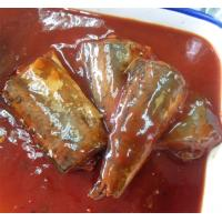 Buy canned spanish mackerel in tomato sauce at wholesale prices