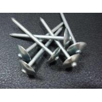 Quality Roofing Nail with Umbrella Head Plain Shank for sale