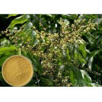 Quality Soapnut Saponin Cosmetic Raw Materials Soapberry Extract For Whitening Spot for sale