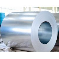 China Hot dip galvanized steel,hot roll coils on sale