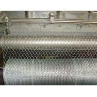 Quality Galvanized Hexagonal Wire Netting for sale