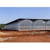Quality Galvanized Steel Frame Plastic Film Greenhouse Good Insulation Performance for sale