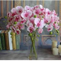 China Small butterfly orchid,seven head butterfly orchid,Dried flowers, Simulation flowers, grass flower,Artificial flowers on sale