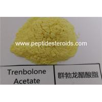 Quality High Purity Trenbolone Acetate Powder Tren Ace Hormone Injection Muscle Gain Applied for sale