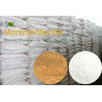 China Feed Grade Trace Element Minerals White Montmorillonite Powder STE-MONT90 on sale