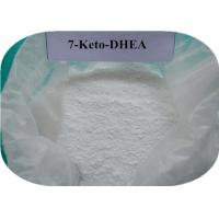 CAS 566-19-8 Raw Steroid Powder 7 Keto DHEA Supplement For Increasing Metabolism