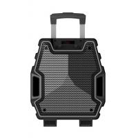 Quality 8 Inch Black Color Portable  Plastic Body Speaker System With Bluetooth Function for sale