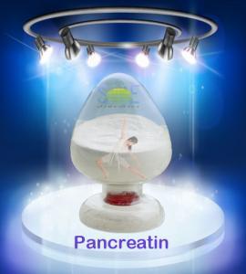 Industrial Leather Treatment 99% Pure Pancreatin Powder SINOzym-PAN4SK