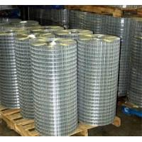 Quality Factory price 1/4 inch galvanized welded wire mesh for sale