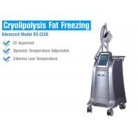 China Fat Burning Cryolipolysis Fat Freeze Slimming Machine , Fat Cavitation Machine For Men Women on sale