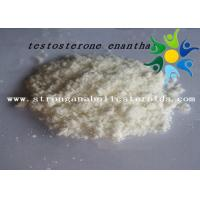 Quality Raw Test E Powder Testosterone Anabolic Steroid Testosterone Enanthate CAS 315-37-7 for sale