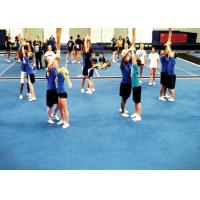 Buy cheap Hot sale roll carpet cheerleading floor mat/gymnastic mat/f/gym roll mat/roll from wholesalers