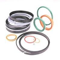 Quality Parker Hydraulic Piston Seal BCC04800030 for sale
