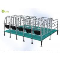 Quality Swine Farm Galvanized Pipe Pig Gestation Stalls / Pregnant Swine Gestation Crates for sale