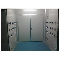 China Anti-Static Class 10000 Cargo Air Shower Tunnel For Cosmetic Workshop , Sandwich Panel on sale