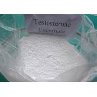 Effective Testosterone Enanthate powder and Injectable liquid for Muscle Building CAS 315-37-7 for sale