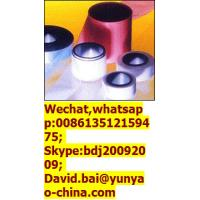 China Expanded Joint Sealant on sale