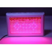 Quality Garden LED Grow Lights 300W - 2000W Fast Heat Dissipation With Internal Cooling System for sale