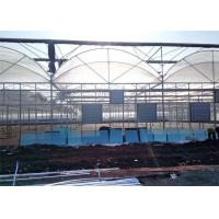 Quality Large Plastic Cover Greenhouse Hot Galvanized Skeleton With Strong Ventilation Ability for sale