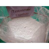 Buy cheap Bodybuilding Testosterone Anabolic Steroid Testosterone Enanthate Cas 315-37-7 product