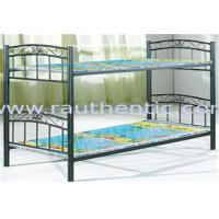 Quality Contemporary Childrens Bunk Beds Twin Over Full , Twin Full Bunk Bed For Girls & Boys for sale