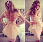Quality V Neck Short Evening Party Dresses Long Sleeve Short Ivory Lace Flower Knee Length for sale