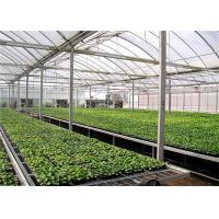 Buy cheap Large Size Greenhouse Rolling Benches Galvanized Frame Cover Materials from wholesalers