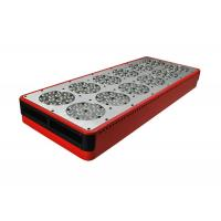 Quality 630nm Red 460nm Blue 600x300 LED grow light 300w for sale
