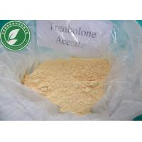 Quality USP Standard Raw Steroid Powder Trenbolone Acetate For Weight Loss CAS 10161-34-9 for sale