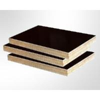 Buy cheap Shuttering Plywood product