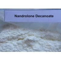 Quality Legal Deca Durabolin Steroids Powder Nandrolone Decanoate For Muscle Enhancement for sale