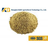 Quality Full Fat Organic Fish Meal Fertilizer / Food Grade Fish Meal Enhance Poultry Nutrition for sale