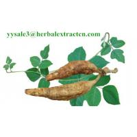 Buy cheap Kudzu Root extract, Isoflavones 40%, CAS No.: 3681-99-0, Auxiliary lower blood pressure, Arctium Extract, Chinese Extrac product