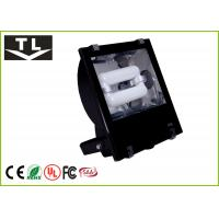 Quality No Magnetic Induction Exterior Flood Light , High CRI Ra80 Outdoor Flood Light for sale