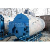 China Fully Automatic Natural Gas Fired Steam Boiler For Crude Palm Factory on sale