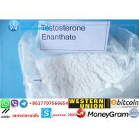 Buy cheap Wholesale TestosteroneEnanthate for bodybuilding Fast Acting CAS No:315-37-7 Testosteron Steroids Powder product