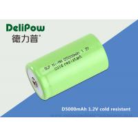 D5000 1.2 Rechargeable Batteries For Cold Weather Long Cycle Life