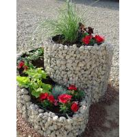 Quality Ornate Welded Gabion Raised Garden Beds in Spiral/Triple Rings for Flowers & Vegetables for sale