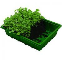 Quality 2012 nursery seedlings for seed tray HX35112 for sale