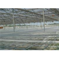 Quality Large Size Greenhouse Rolling Benches Galvanized Frame Cover Materials for sale