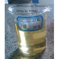 Buy cheap Semi Finshed Injectable Anabolic Steroids Oil Testosterone Enanthate 250mg/ml from wholesalers