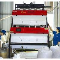 Quality CCD PET flakes Color Sorter for sale