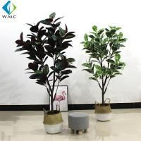 1.6m Height Artificial Bonsai Tree , Faux Rubber Tree Plant For Indoor R020010 for sale