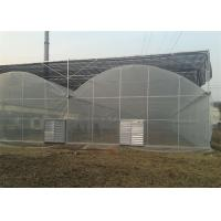 Quality Large Size Reinforced Plastic Sheeting Greenhouse With Hydroponics System for sale